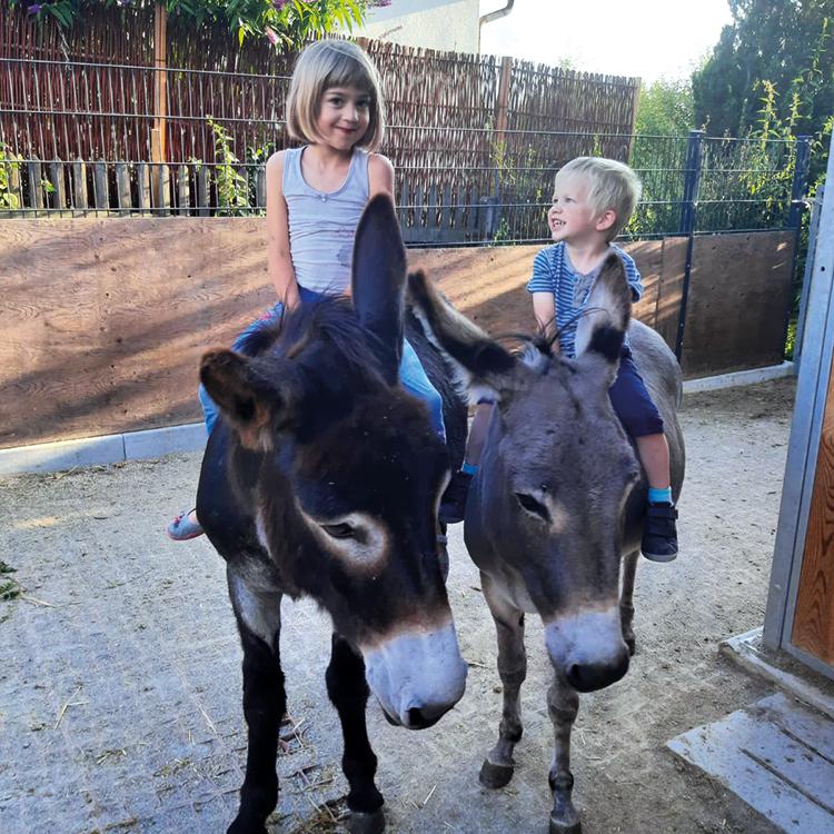 Kinder auf Bauernhof Esel